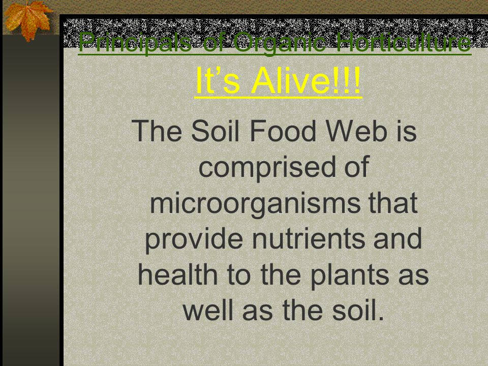 The Soil Food Web is comprised of microorganisms that provide nutrients and health to the plants as well as the soil.