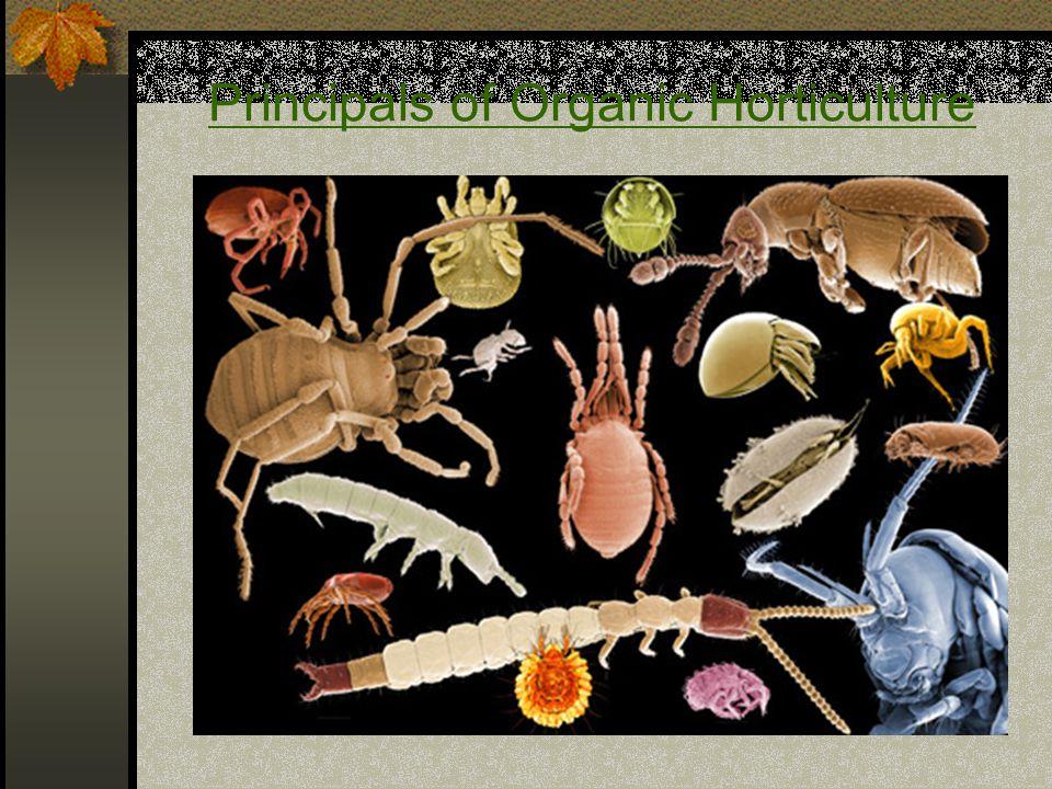 Principals of Organic Horticulture