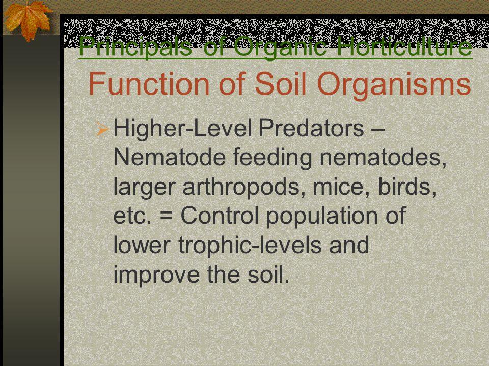 Principals of Organic Horticulture Function of Soil Organisms  Higher-Level Predators – Nematode feeding nematodes, larger arthropods, mice, birds, etc.