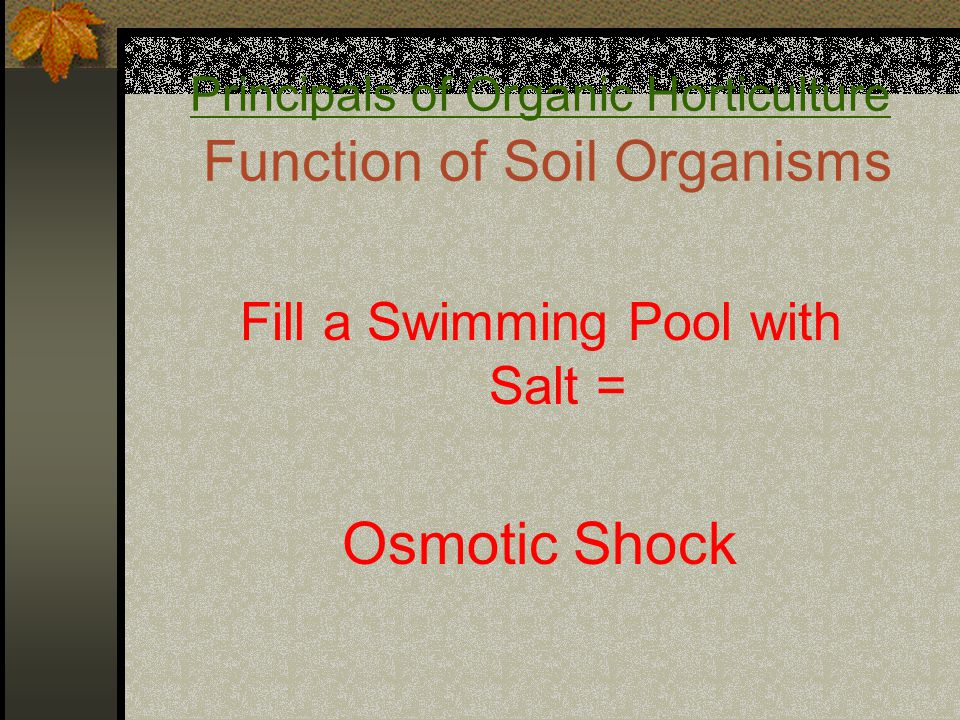 Principals of Organic Horticulture Function of Soil Organisms Fill a Swimming Pool with Salt = Osmotic Shock