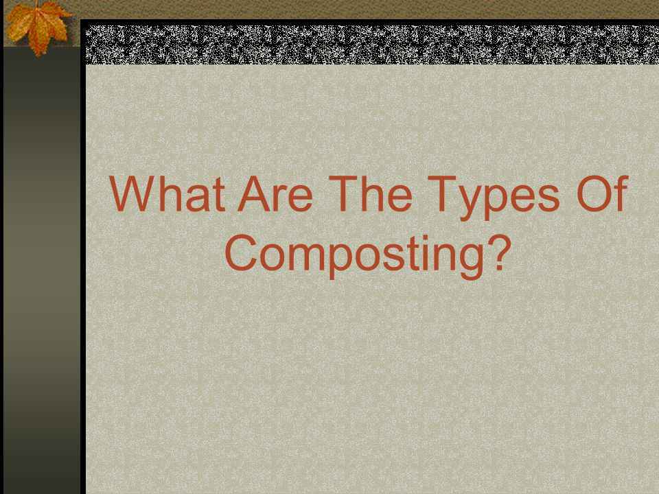 What Are The Types Of Composting