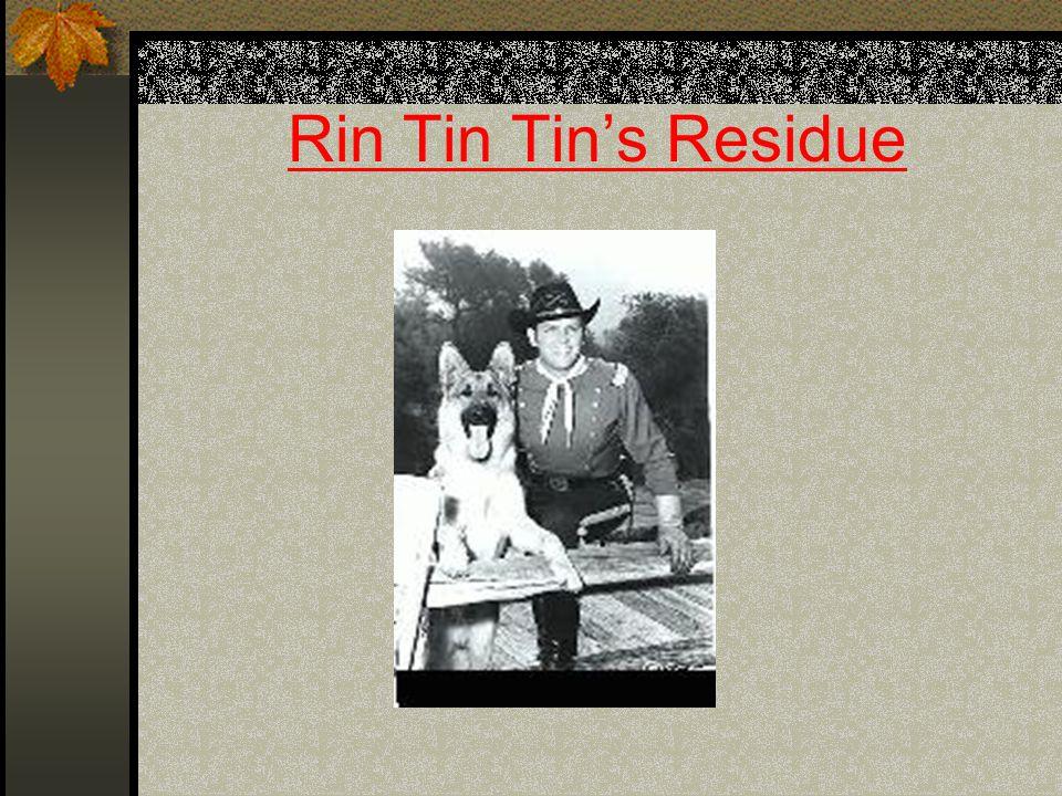 Rin Tin Tin's Residue