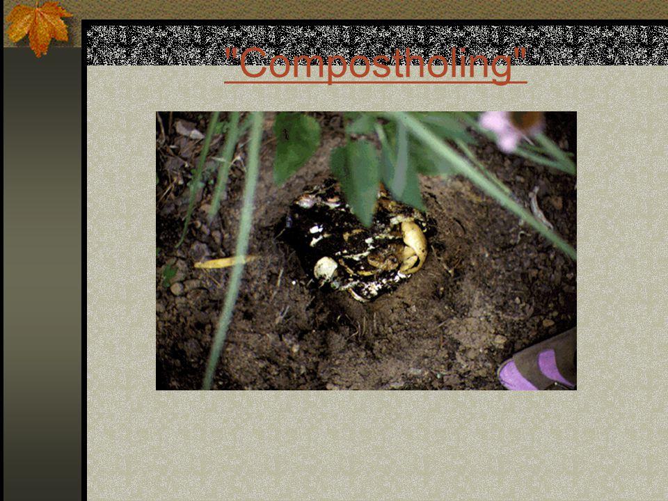 Compostholing