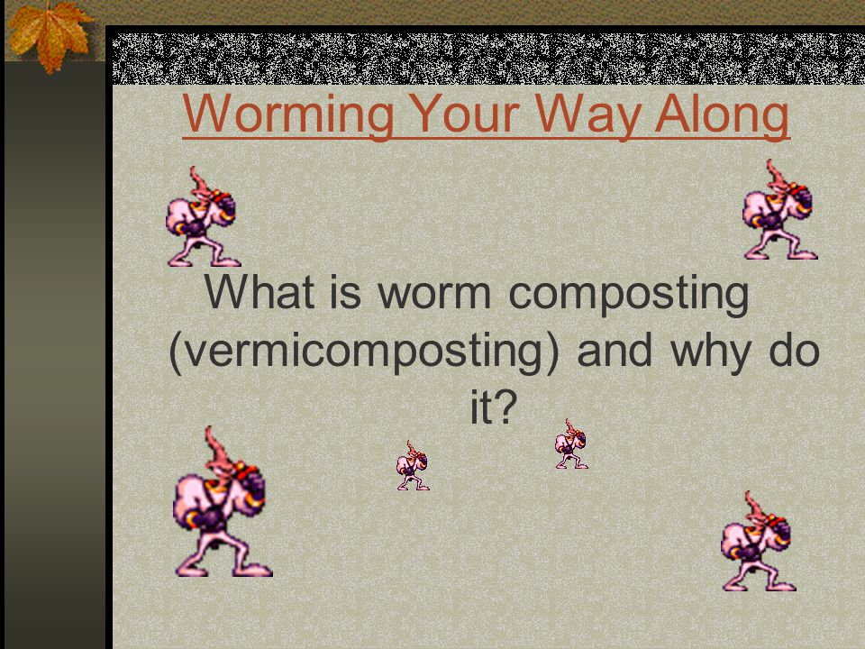 Worming Your Way Along What is worm composting (vermicomposting) and why do it?