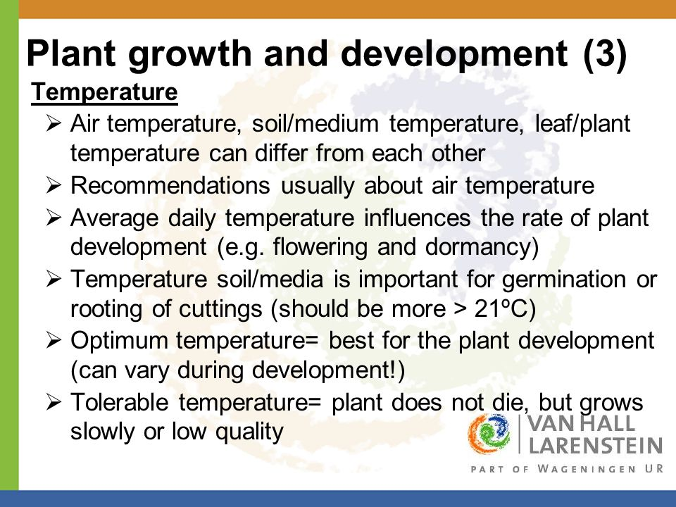 Plant growth and development (3) Temperature  Air temperature, soil/medium temperature, leaf/plant temperature can differ from each other  Recommendations usually about air temperature  Average daily temperature influences the rate of plant development (e.g.