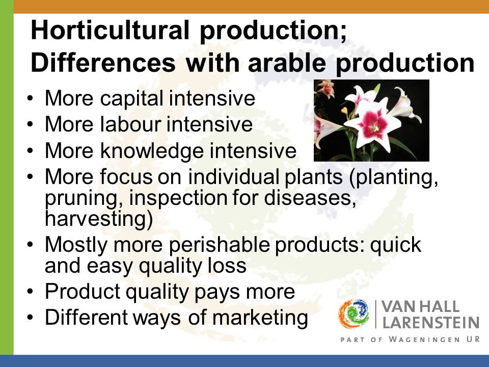 Horticultural production; Differences with arable production More capital intensive More labour intensive More knowledge intensive More focus on individual plants (planting, pruning, inspection for diseases, harvesting) Mostly more perishable products: quick and easy quality loss Product quality pays more Different ways of marketing