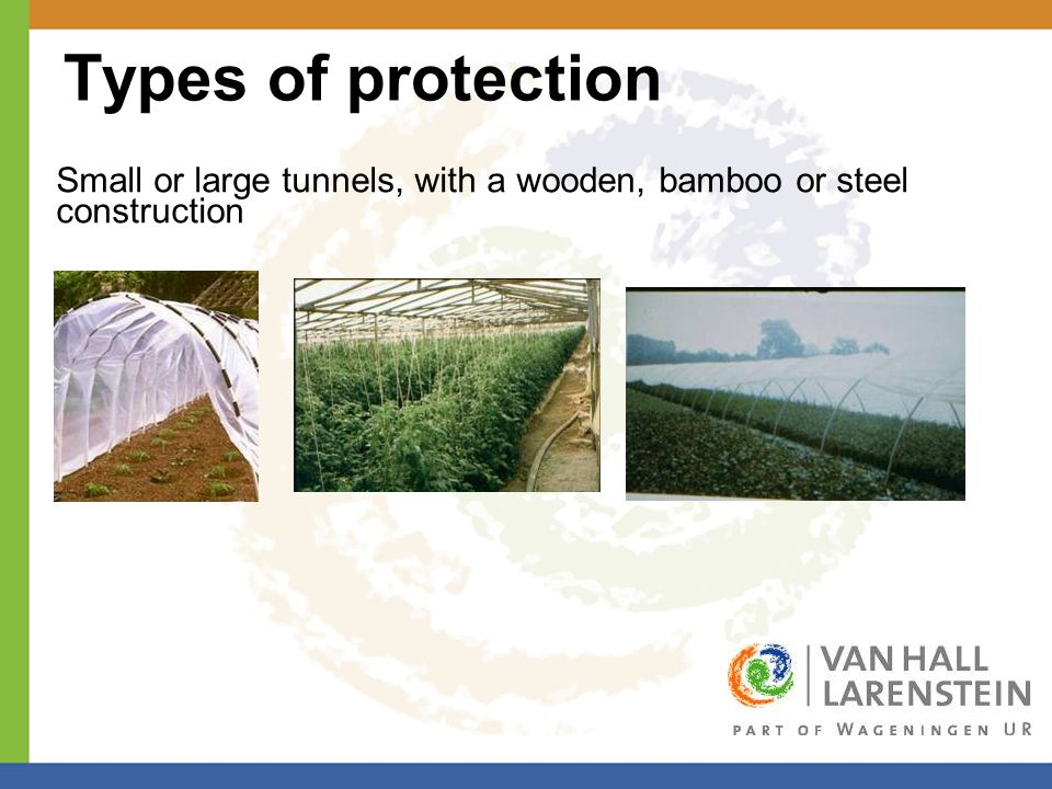 Types of protection Small or large tunnels, with a wooden, bamboo or steel construction