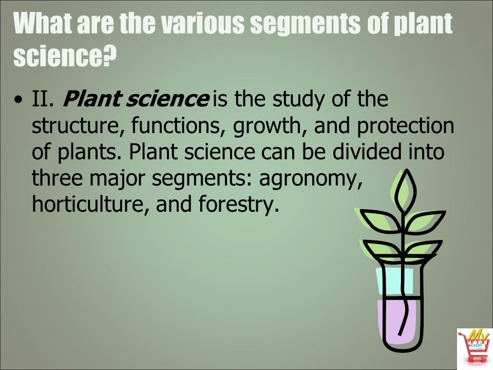 What are the various segments of plant science? II. Plant science is the study of the structure, functions, growth, and protection of plants. Plant sc