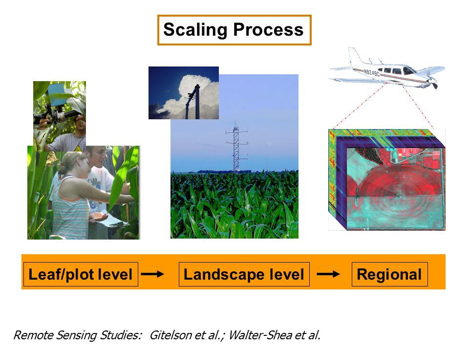 Leaf/plot levelLandscape levelRegional Scaling Process Remote Sensing Studies: Gitelson et al.; Walter-Shea et al.