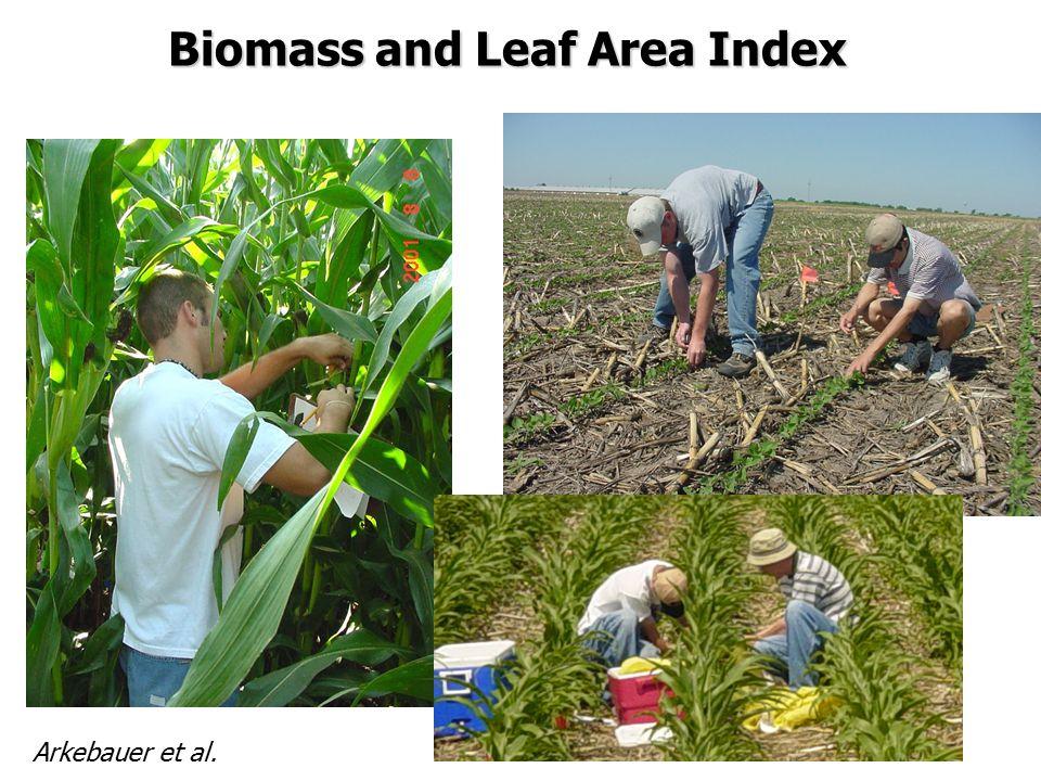 Biomass and Leaf Area Index Arkebauer et al.