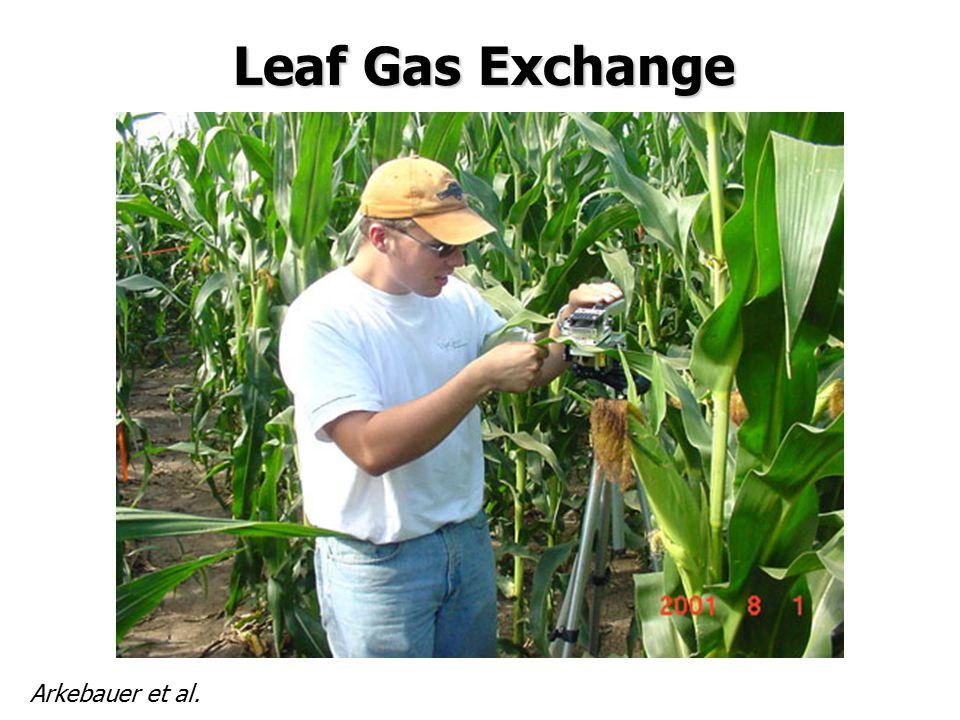Leaf Gas Exchange Arkebauer et al.