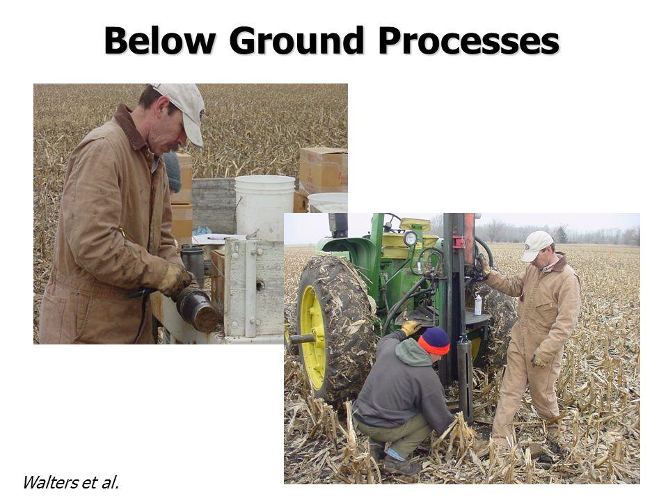 Below Ground Processes Walters et al.