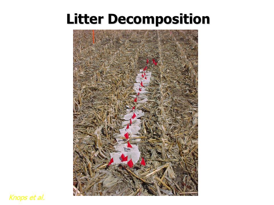 Litter Decomposition Knops et al.