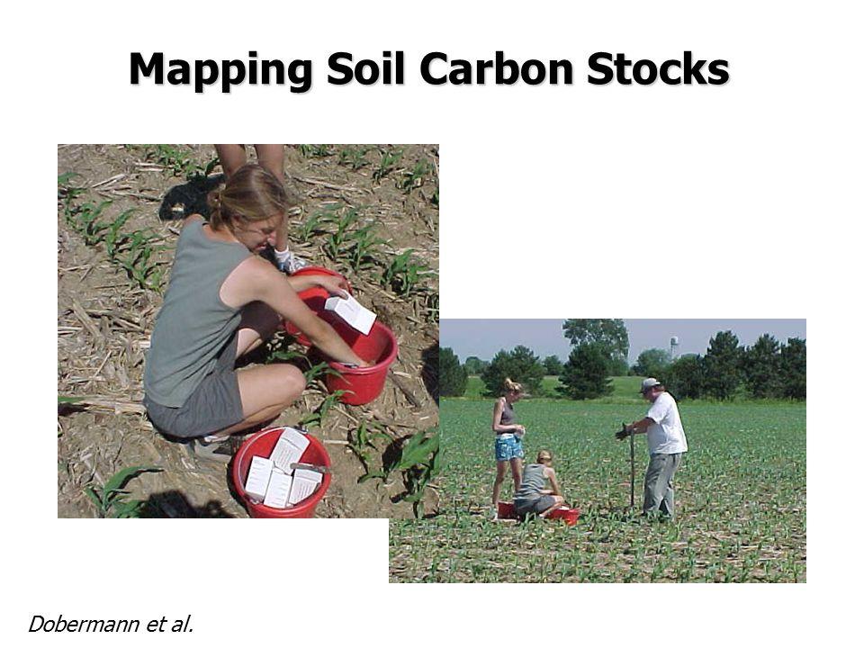 Mapping Soil Carbon Stocks Dobermann et al.