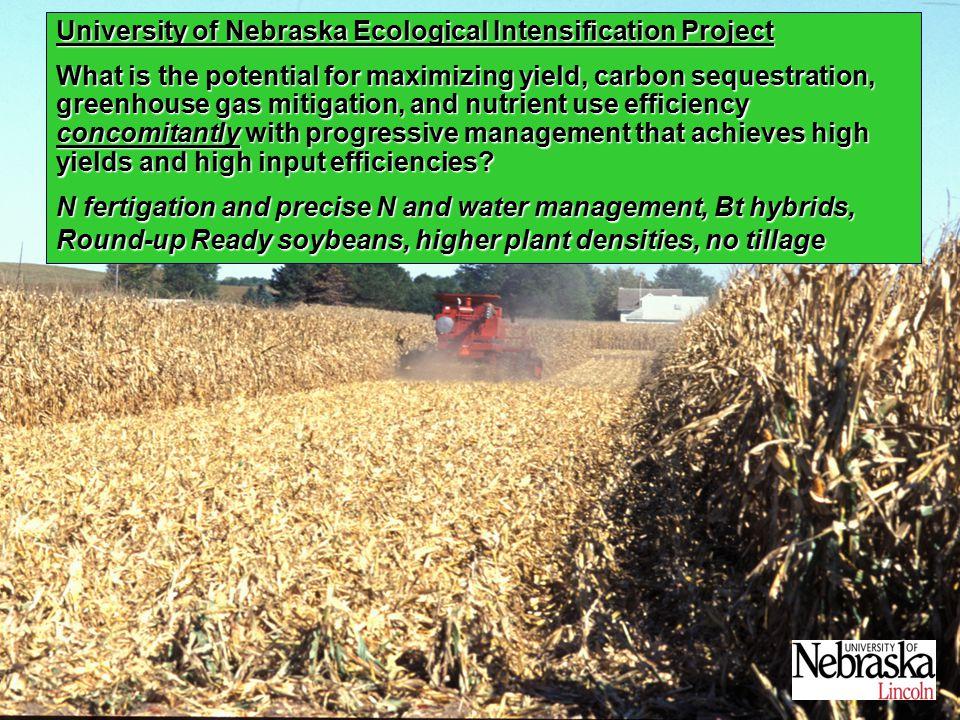 Annually Integrated NEE (g C m -2 y -1 ) Maize, NE 300 to 500 (Verma et al., 2005) Harvard Forest, MA 200 (Barford et al., 2003) Howland Forest, ME 174 (Hollinger et al., 2004) Univ.
