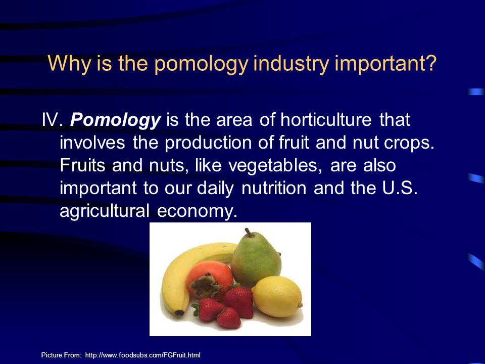 Why is the pomology industry important? IV. Pomology is the area of horticulture that involves the production of fruit and nut crops. Fruits and nuts,