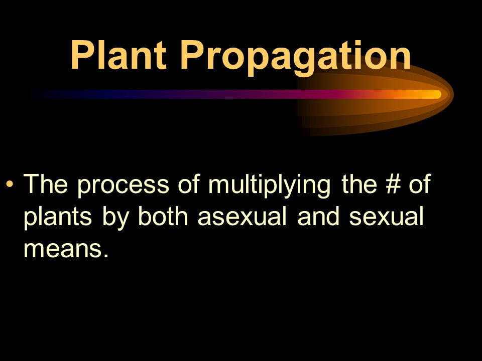 Horticulture Industry Vocabulary Language Professionalism