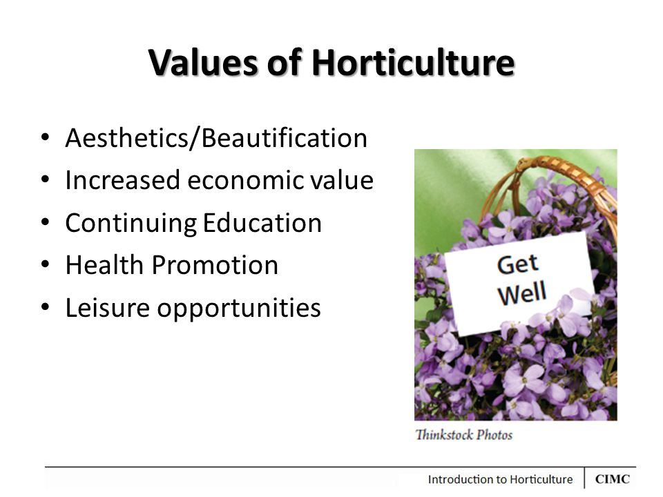 Values of Horticulture Aesthetics/Beautification Increased economic value Continuing Education Health Promotion Leisure opportunities