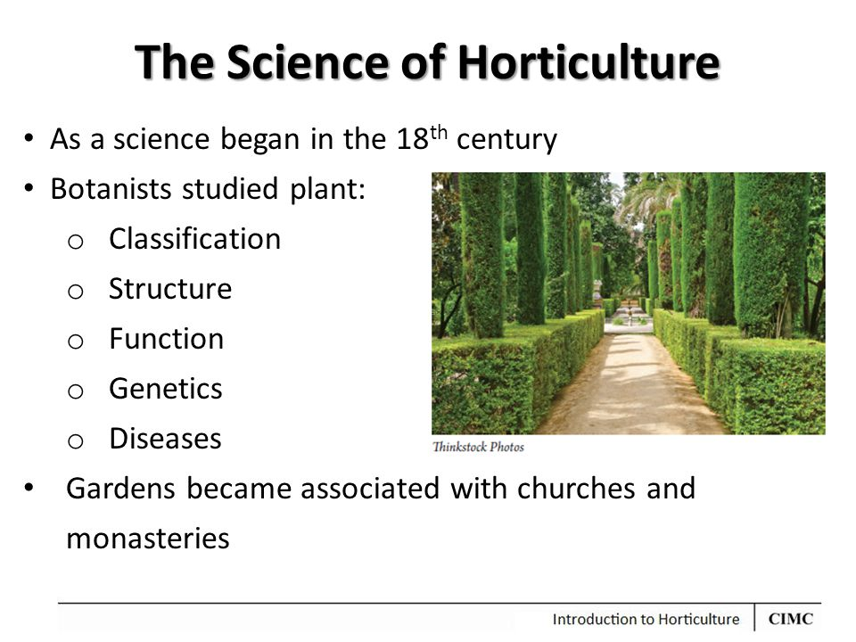 The Science of Horticulture As a science began in the 18 th century Botanists studied plant: o Classification o Structure o Function o Genetics o Dise