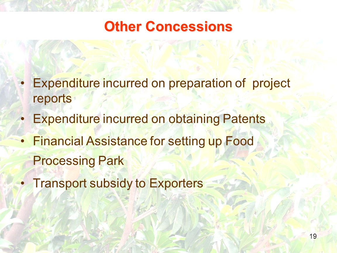 19 Expenditure incurred on preparation of project reports Expenditure incurred on obtaining Patents Financial Assistance for setting up Food Processing Park Transport subsidy to Exporters Other Concessions