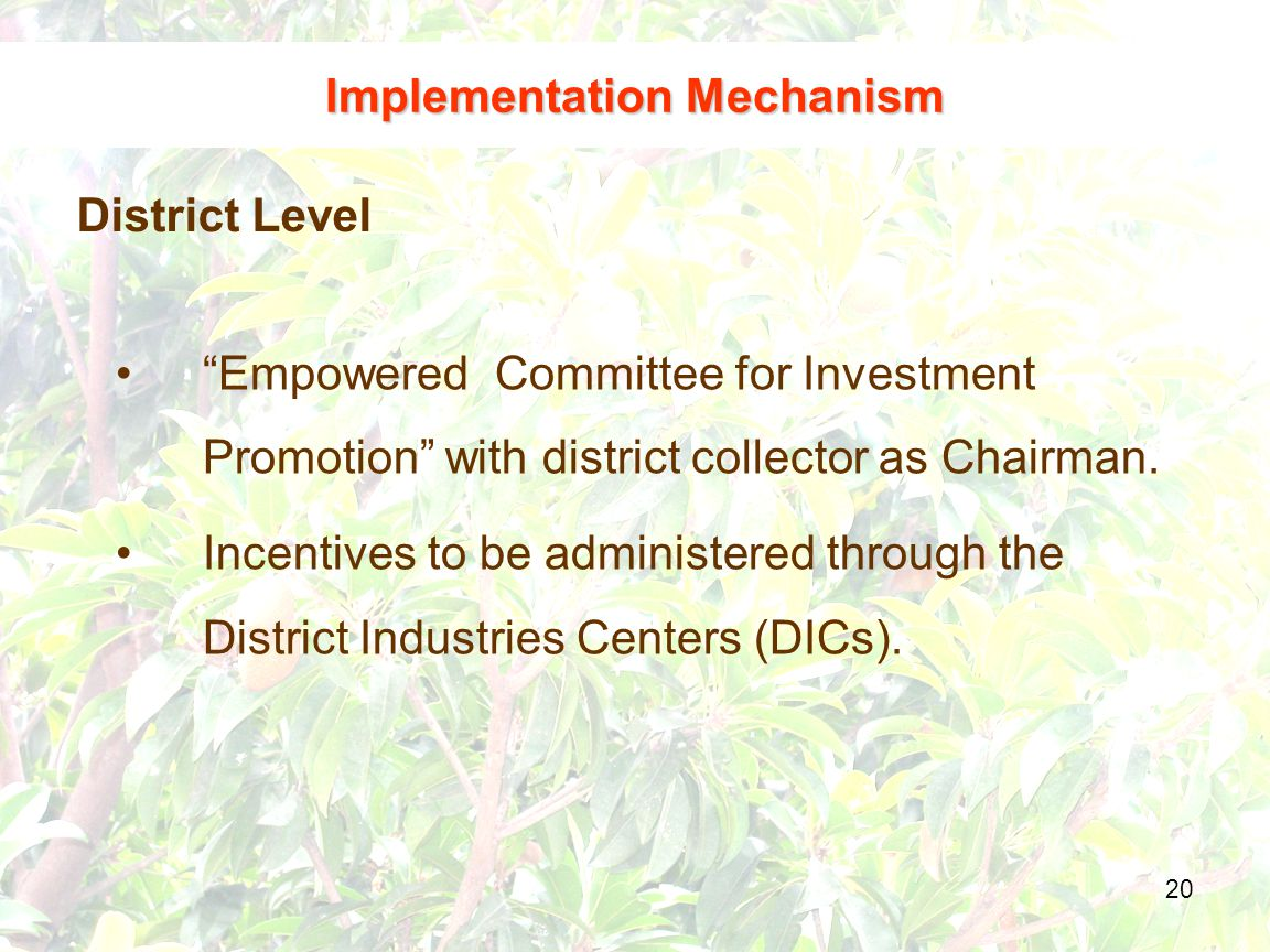 20 District Level Implementation Mechanism Empowered Committee for Investment Promotion with district collector as Chairman.