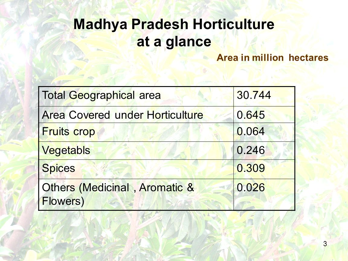 3 Madhya Pradesh Horticulture at a glance Total Geographical area30.744 Area Covered under Horticulture0.645 Fruits crop0.064 Vegetabls0.246 Spices0.309 Others (Medicinal, Aromatic & Flowers) 0.026 Area in million hectares