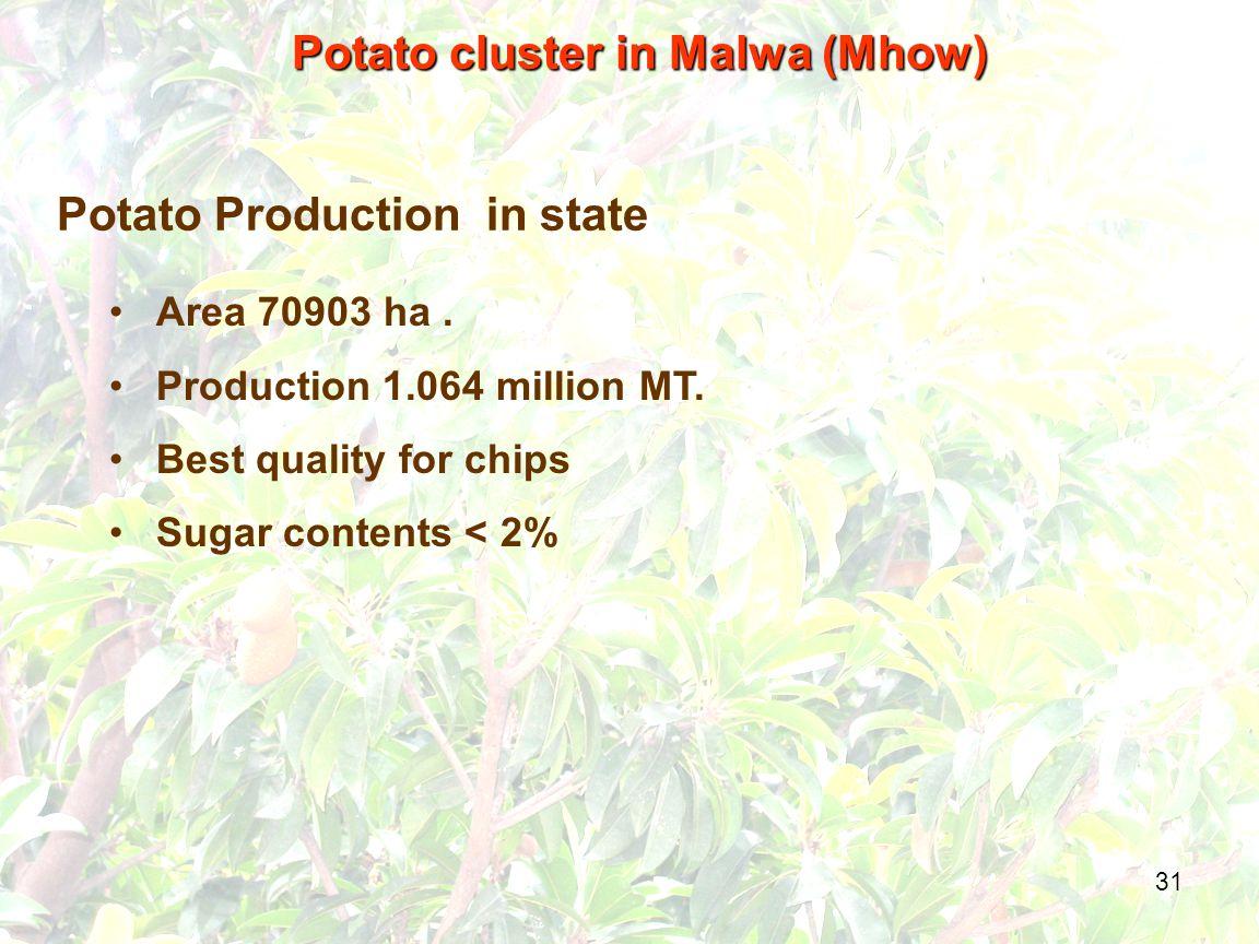 31 Potato Production in state Area 70903 ha. Production 1.064 million MT.