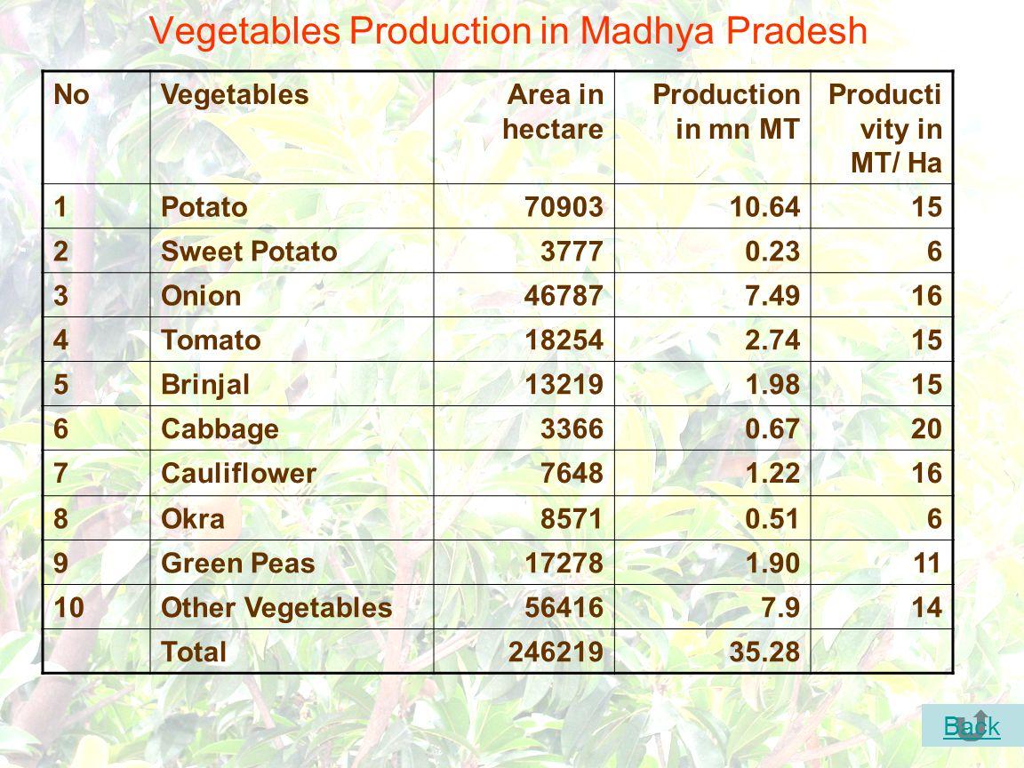 37 Vegetables Production in Madhya Pradesh NoVegetablesArea in hectare Production in mn MT Producti vity in MT/ Ha 1Potato7090310.6415 2Sweet Potato37770.236 3Onion467877.4916 4Tomato182542.7415 5Brinjal132191.9815 6Cabbage33660.6720 7Cauliflower76481.2216 8Okra85710.516 9Green Peas172781.9011 10Other Vegetables564167.914 Total24621935.28 Back