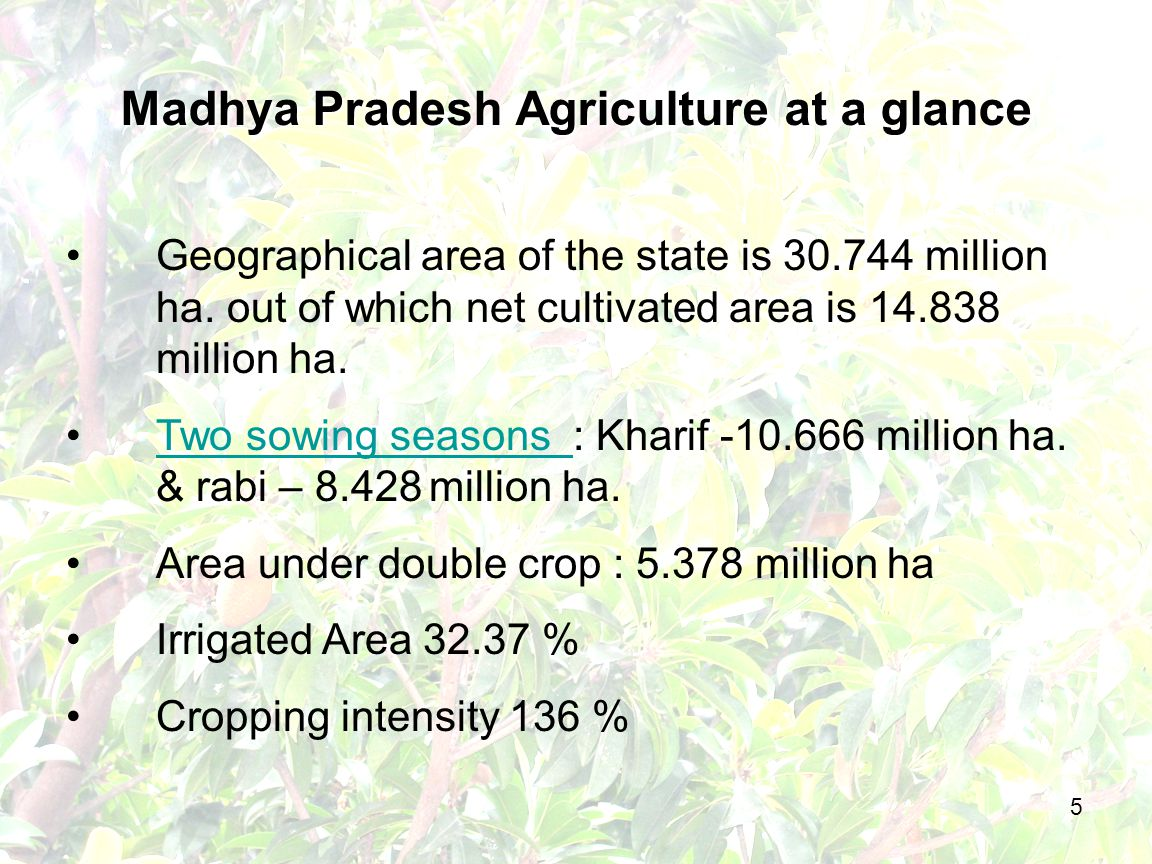 6 Agriculture Production - Major Crops CropAll india ProductionProduction in M.P.