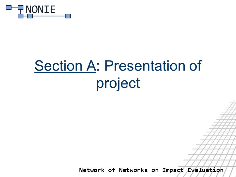 Network of Networks on Impact Evaluation Section A: Presentation of project