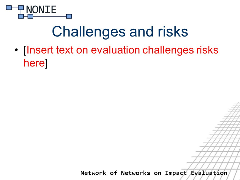 Network of Networks on Impact Evaluation Challenges and risks [Insert text on evaluation challenges risks here]