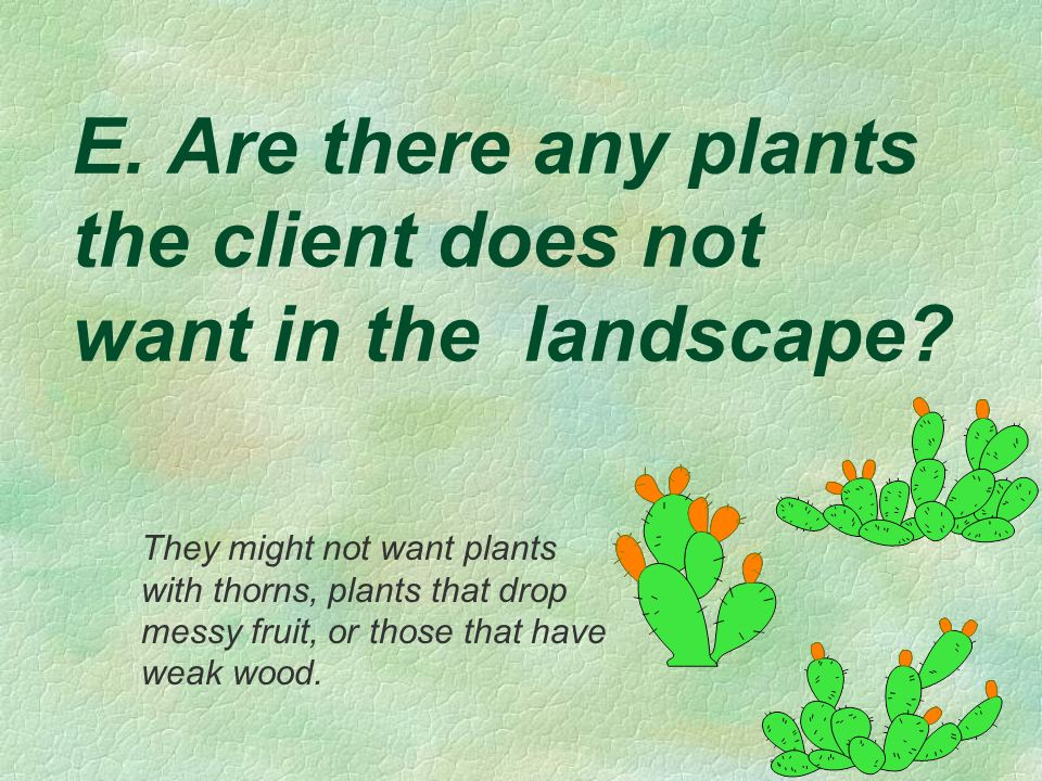 E. Are there any plants the client does not want in the landscape? They might not want plants with thorns, plants that drop messy fruit, or those that