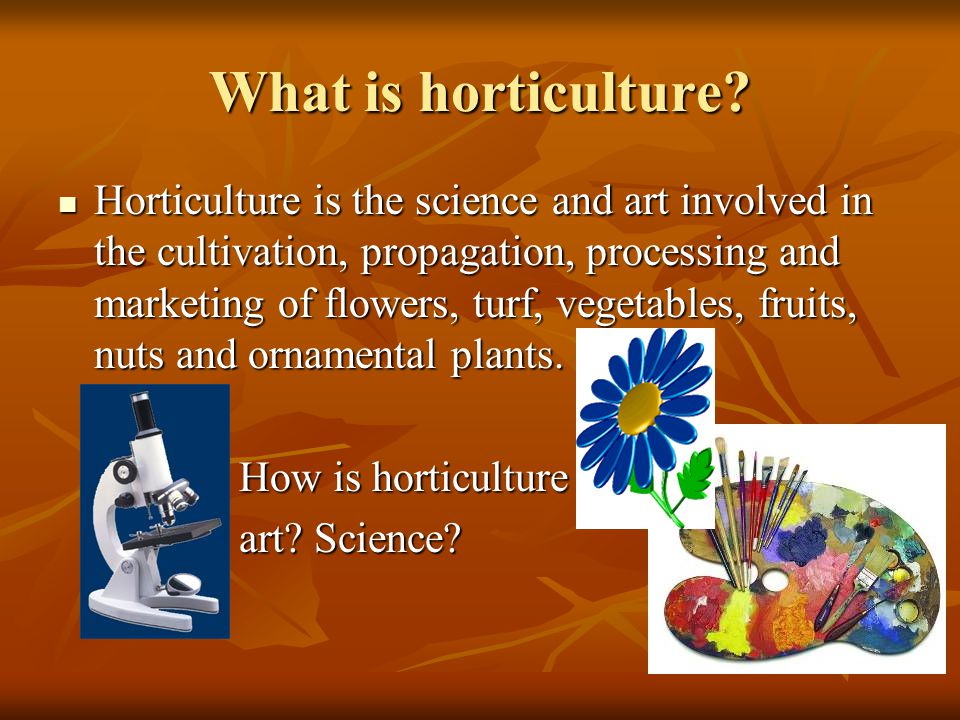 What is horticulture.