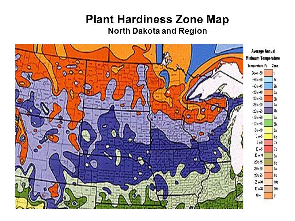 Plant Hardiness Zone Map North Dakota and Region