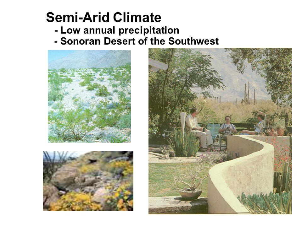 Semi-Arid Climate - Low annual precipitation - Sonoran Desert of the Southwest