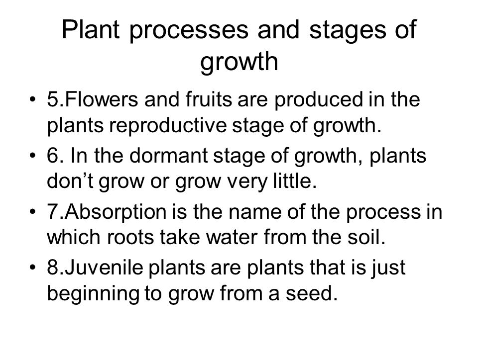 Plant processes and stages of growth 5.Flowers and fruits are produced in the plants reproductive stage of growth. 6. In the dormant stage of growth,