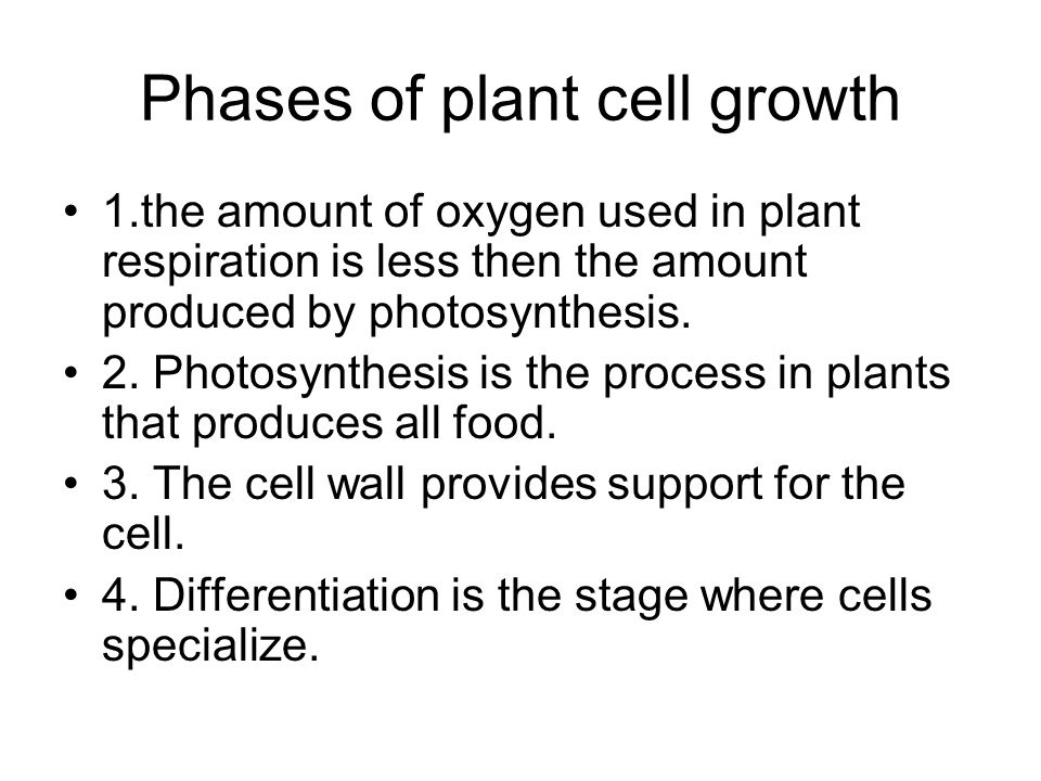 Phases of plant cell growth 1.the amount of oxygen used in plant respiration is less then the amount produced by photosynthesis. 2. Photosynthesis is