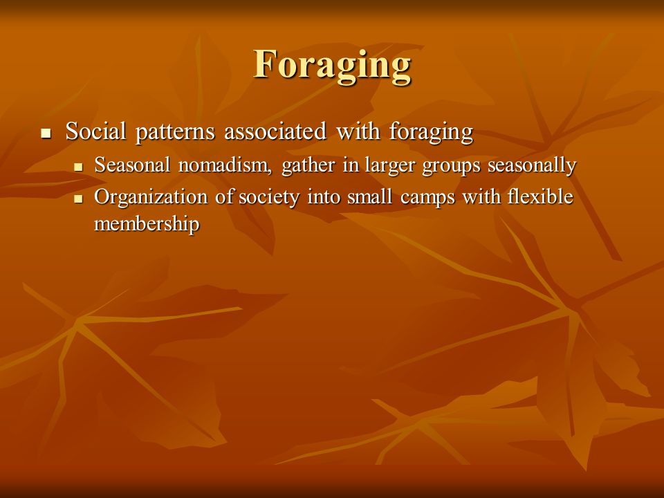 Foraging Social patterns associated with foraging Social patterns associated with foraging Seasonal nomadism, gather in larger groups seasonally Seasonal nomadism, gather in larger groups seasonally Organization of society into small camps with flexible membership Organization of society into small camps with flexible membership