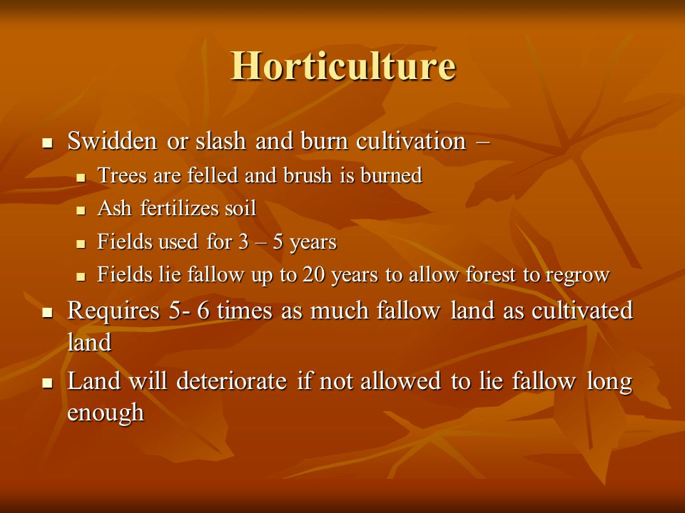 Horticulture Swidden or slash and burn cultivation – Swidden or slash and burn cultivation – Trees are felled and brush is burned Trees are felled and brush is burned Ash fertilizes soil Ash fertilizes soil Fields used for 3 – 5 years Fields used for 3 – 5 years Fields lie fallow up to 20 years to allow forest to regrow Fields lie fallow up to 20 years to allow forest to regrow Requires 5- 6 times as much fallow land as cultivated land Requires 5- 6 times as much fallow land as cultivated land Land will deteriorate if not allowed to lie fallow long enough Land will deteriorate if not allowed to lie fallow long enough