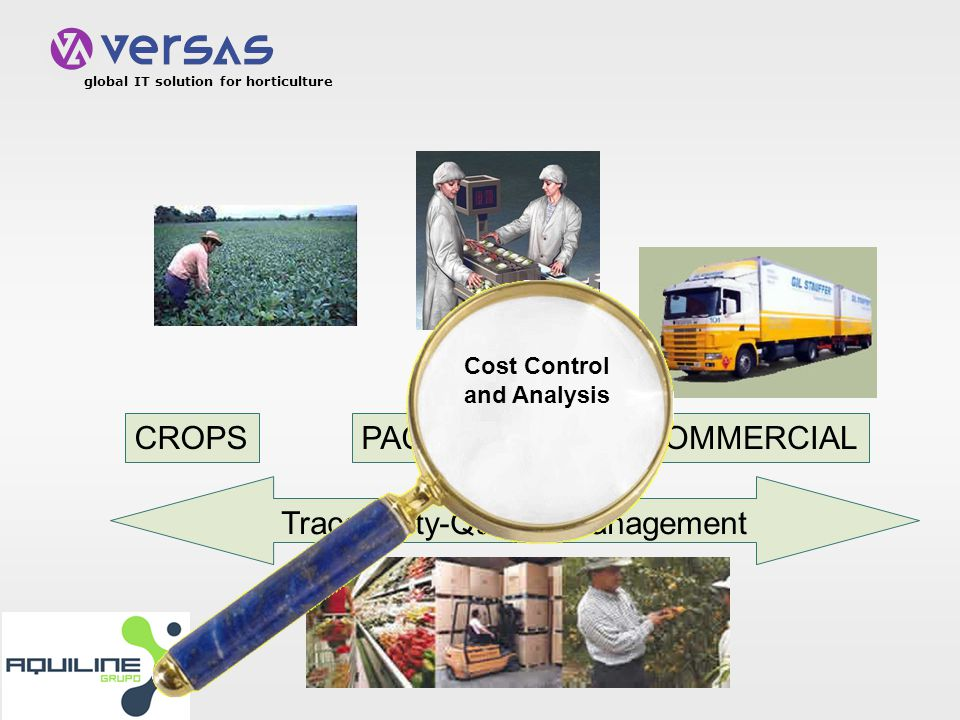 global IT solution for horticulture CROPSPACKINGCOMMERCIAL Traceability-Quality management Cost Control and Analysis
