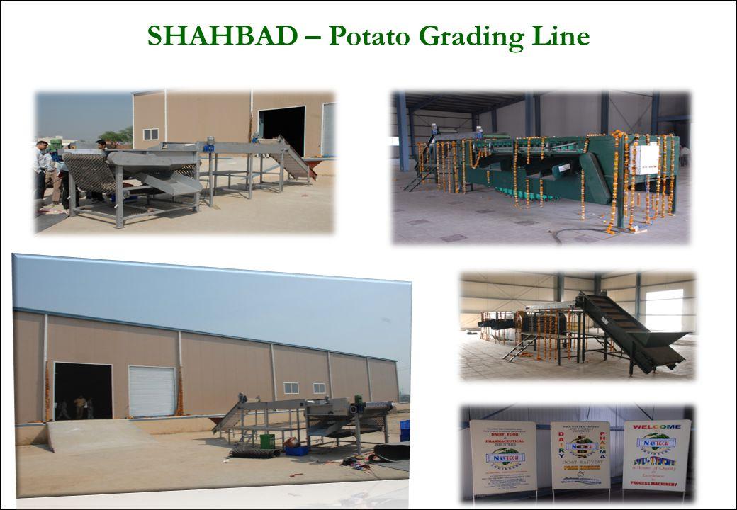 34 SHAHBAD – Potato Grading Line