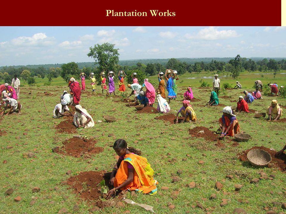 Plantation Works