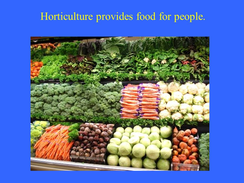 Horticulture provides food for people.