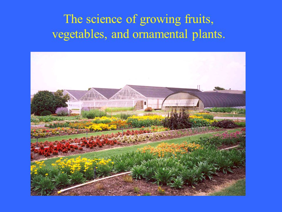 The science of growing fruits, vegetables, and ornamental plants.