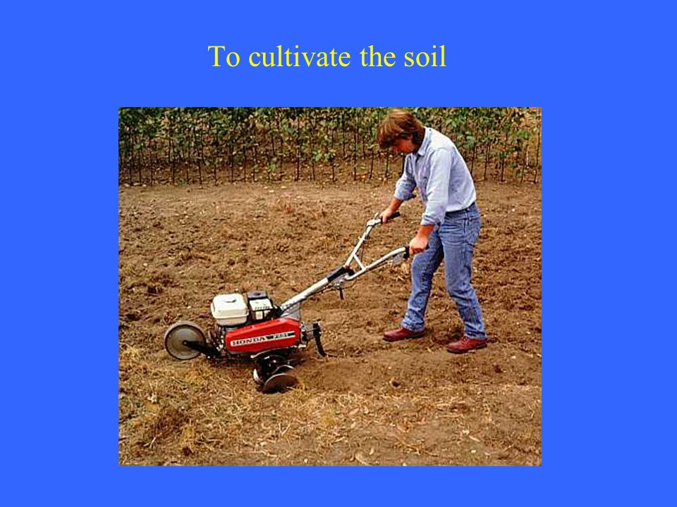 To cultivate the soil