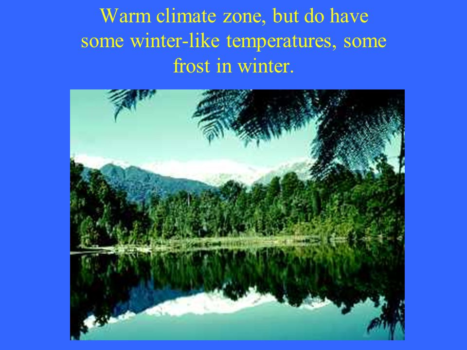 Warm climate zone, but do have some winter-like temperatures, some frost in winter.