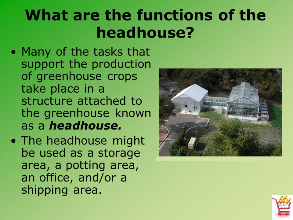 What are the functions of the headhouse? Many of the tasks that support the production of greenhouse crops take place in a structure attached to the g