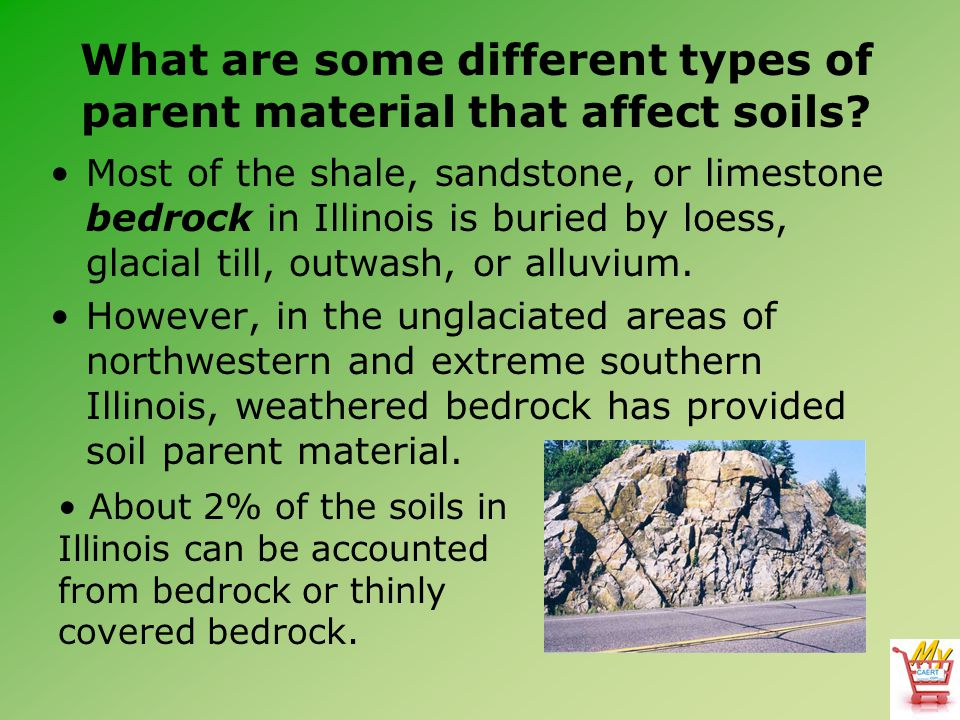 What are some different types of parent material that affect soils? Most of the shale, sandstone, or limestone bedrock in Illinois is buried by loess,