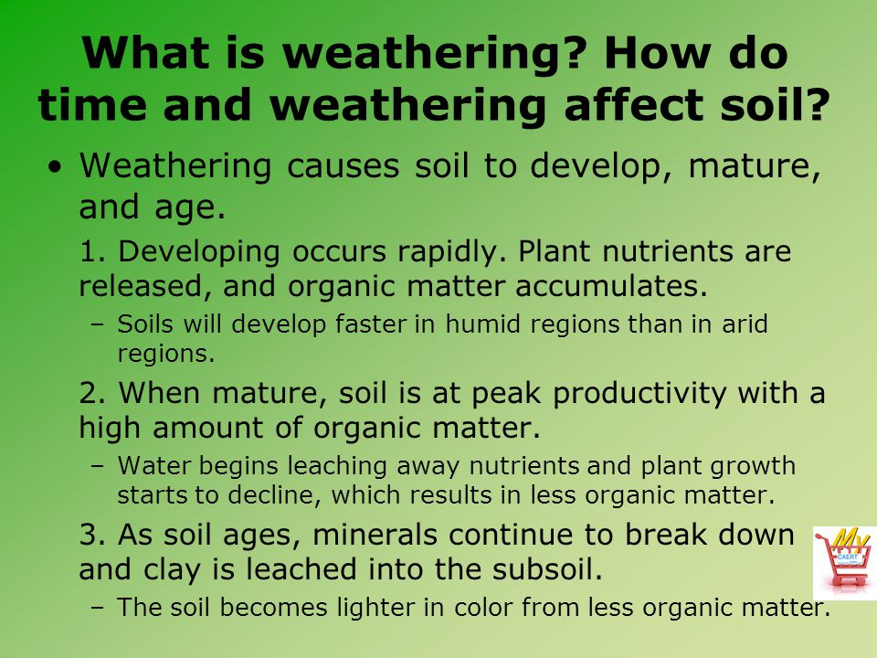 What is weathering? How do time and weathering affect soil? Weathering causes soil to develop, mature, and age. 1. Developing occurs rapidly. Plant nu