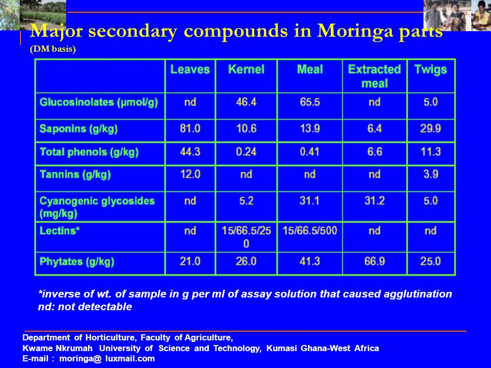 Major secondary compounds in Moringa parts (DM basis) *inverse of wt. of sample in g per ml of assay solution that caused agglutination nd: not detect
